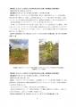 【最終版】カフェ・モサンビコ・プロジェクト事業報告書9