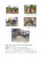 【最終版】カフェ・モサンビコ・プロジェクト事業報告書10
