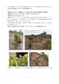 【最終版】カフェ・モサンビコ・プロジェクト事業報告書11