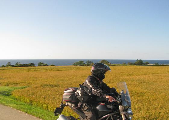 海際まで田んぼが広がる、今が実りの秋