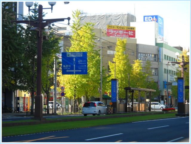 市街地の黄葉