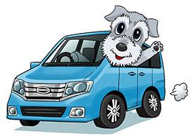 車中泊で楽しむ犬連れの旅