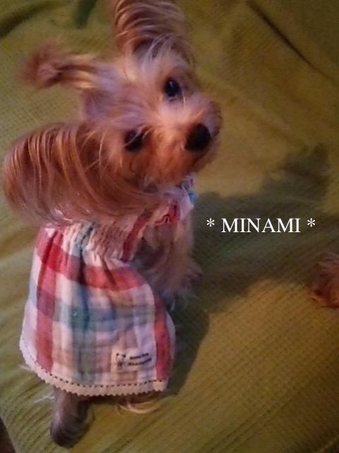 minami_ワンピ