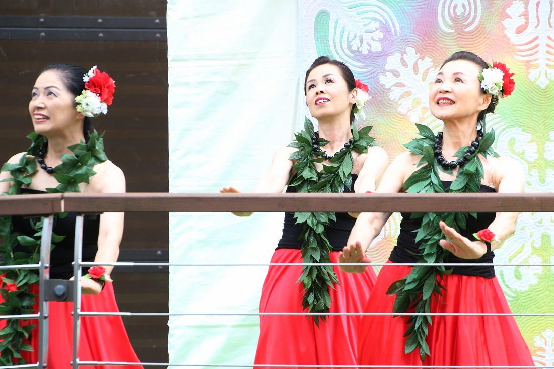 hula 4