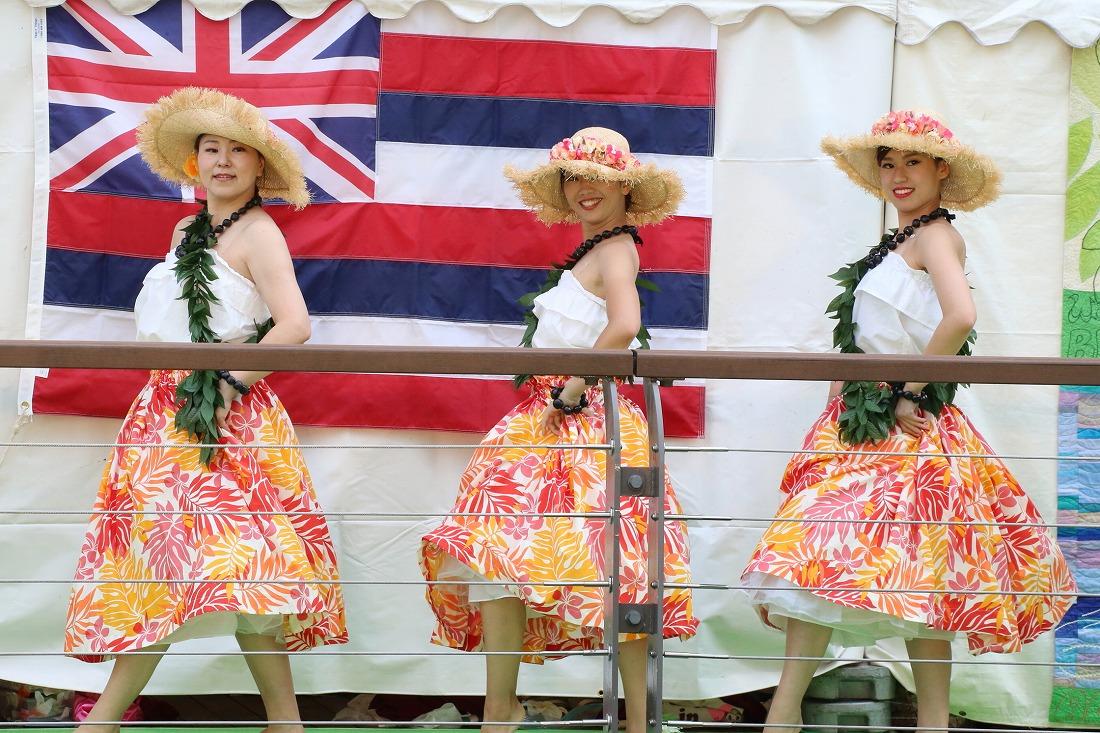 hula 70