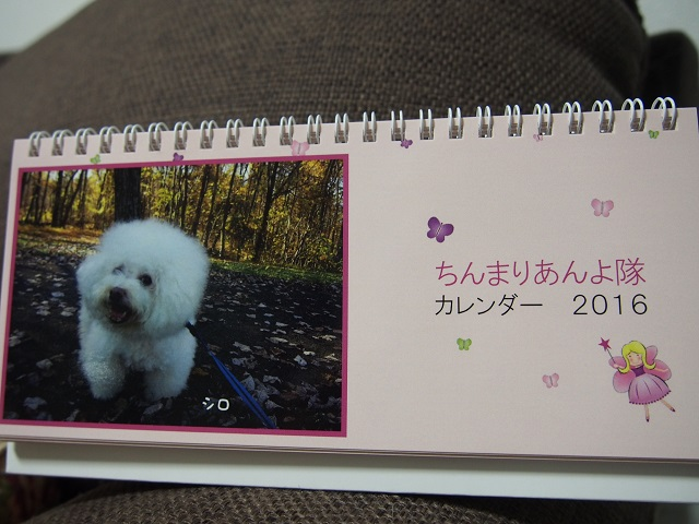 017_20151127214914faa.jpg