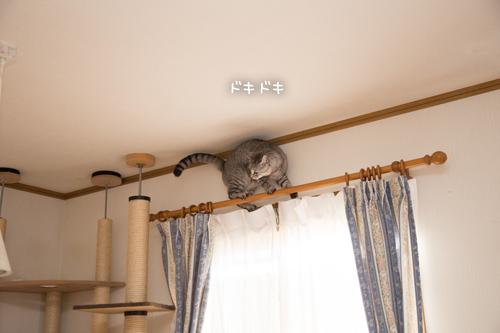 もうちょい
