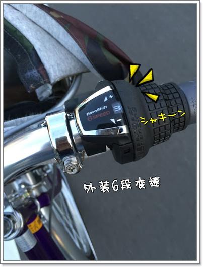 IMG_7607.jpg