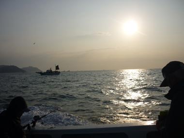 魚釣り 日の出 釣行 爆釣 タチウオ 美味しい 花夢
