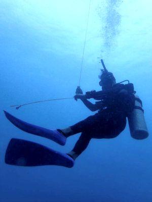 タオ島 ダイブマスター 水中写真