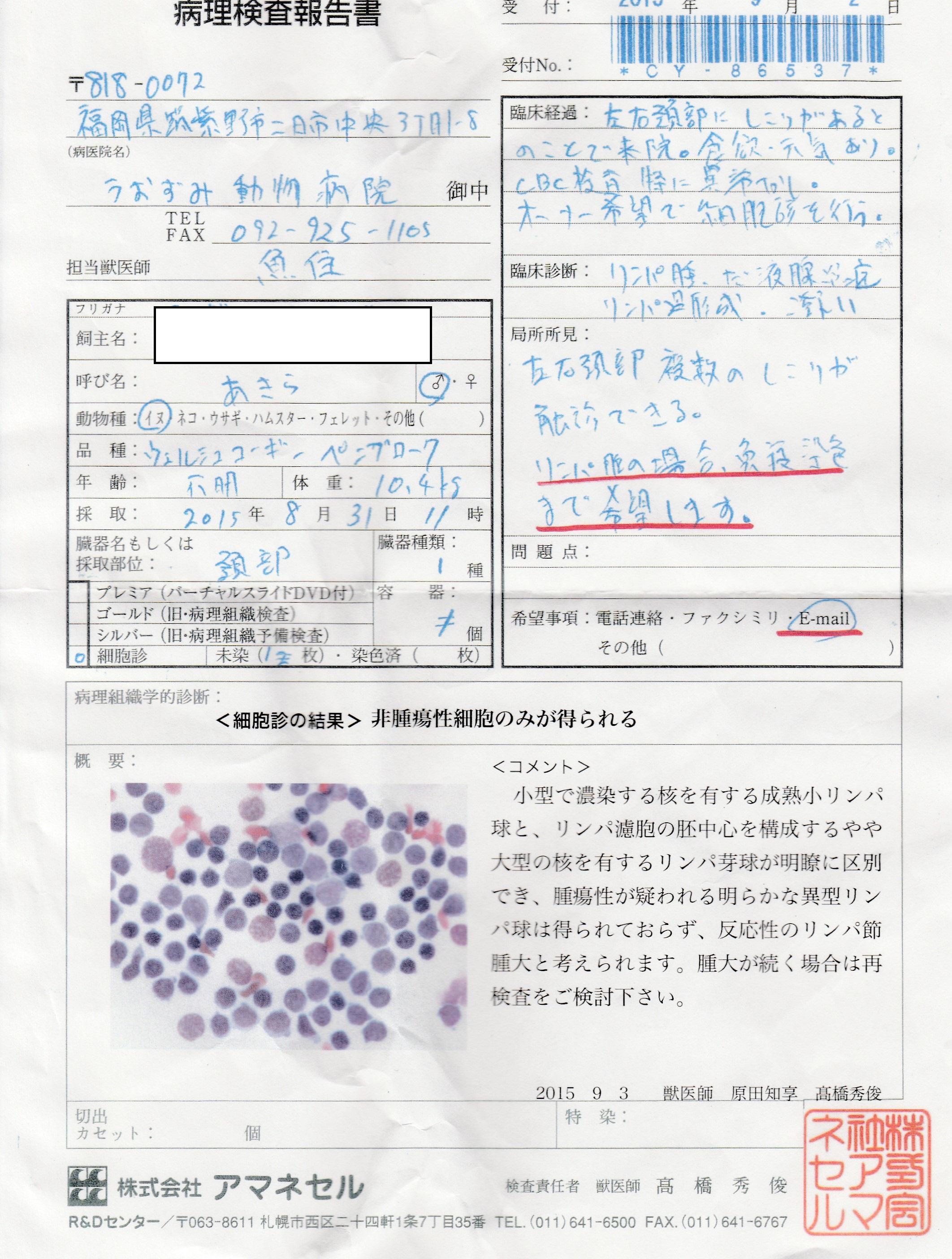 akira_byouri150902.jpg