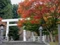 hanitu-kouyou3-web600.jpg