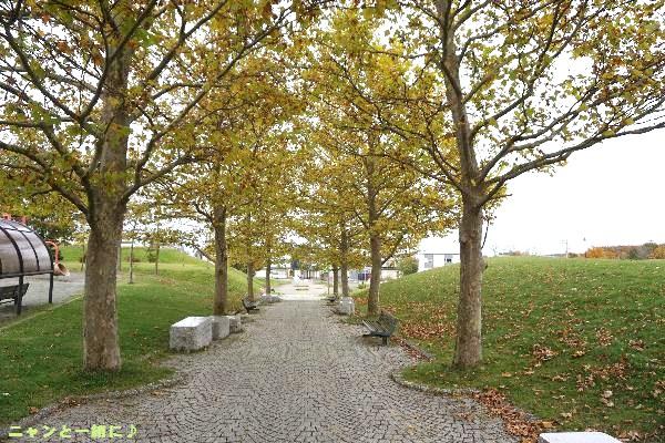 公園1021