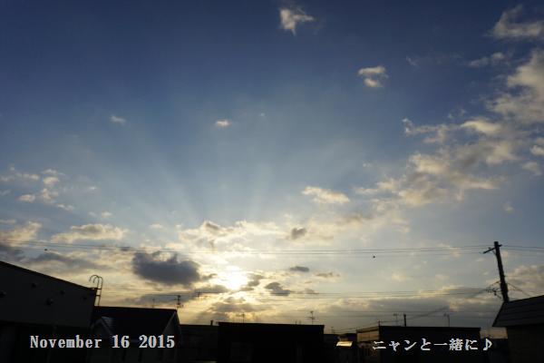 asa7201116.jpg
