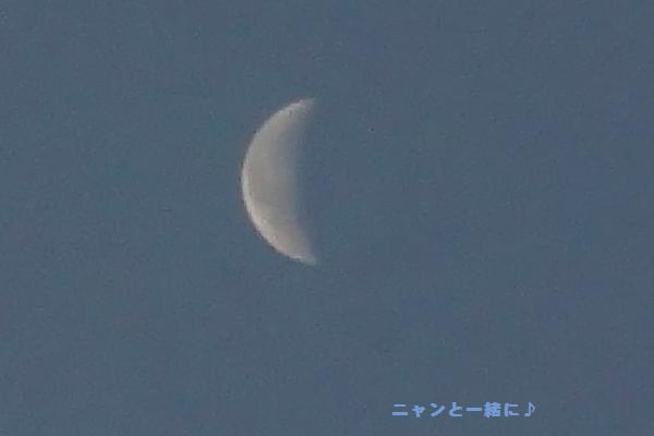asanotuki6471105.jpg