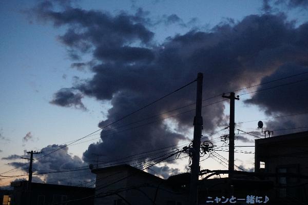 kowakumo1817914.jpg