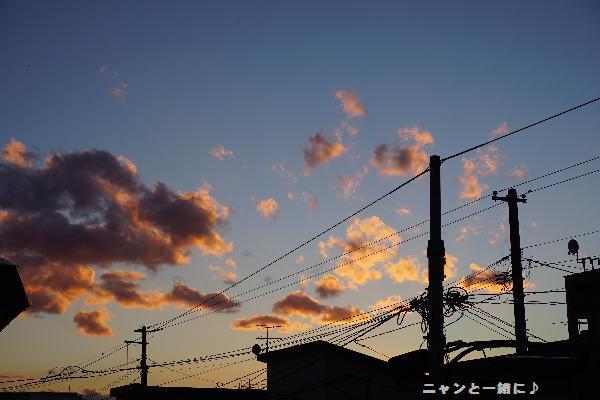 yuuyake10291628.jpg