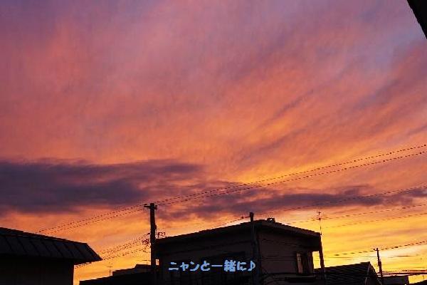 yuuyakeb98.jpg