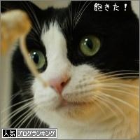 dai20150910_banner.jpg