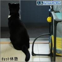 dai20150911_banner.jpg