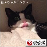 dai20150915_banner.jpg