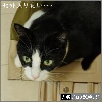 dai20150917_banner.jpg