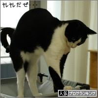 dai20150918_banner.jpg