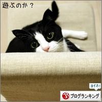 dai20150929_banner.jpg