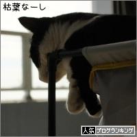 dai20150930_banner.jpg