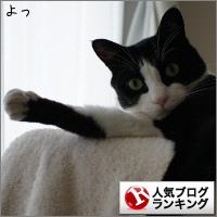 dai20151005_banner.jpg