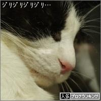dai20151007_banner.jpg
