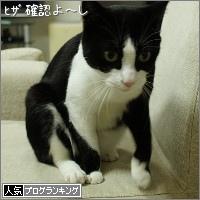 dai20151008_banner.jpg
