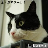 dai20151009_banner.jpg