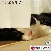 dai20151013_banner.jpg