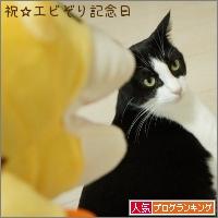 dai20151021_banner.jpg
