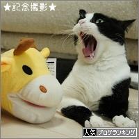 dai20151022_banner.jpg