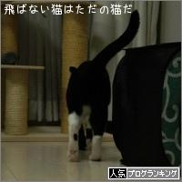 dai20151023_banner.jpg