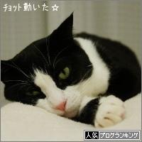 dai20151026_banner.jpg