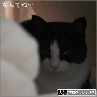 dai20151029_banner.jpg
