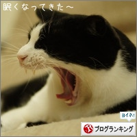 dai20151104_banner.jpg