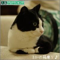 dai20151110_banner.jpg