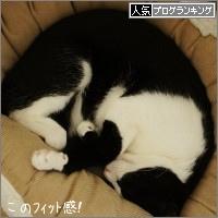 dai20151112_banner.jpg