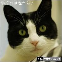 dai20151120_banner.jpg