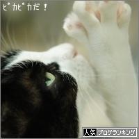 dai20151126_banner.jpg