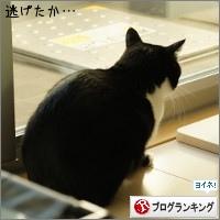 dai20151127_banner.jpg
