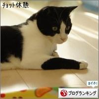 dai20151130_banner.jpg