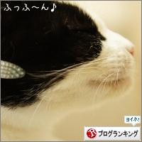 dai20151201_banner.jpg