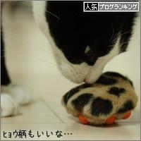 dai20151202_banner.jpg