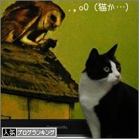dai20151209_banner.jpg