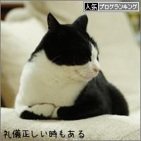 dai20151210_banner.jpg